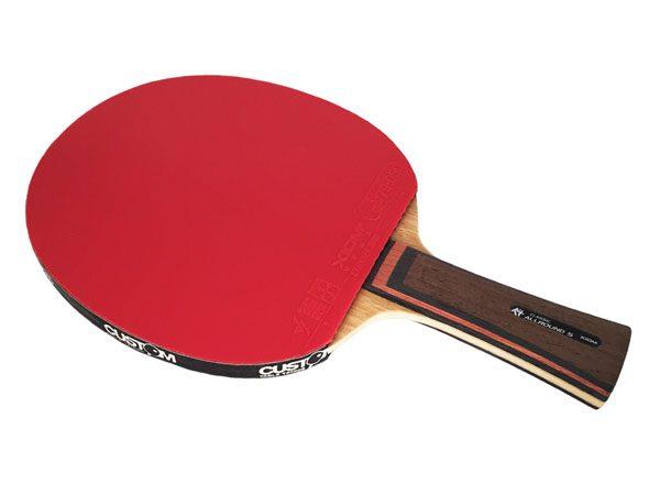 1V XIOM Classic Allround S + VEGA DF Table Tennis Bat